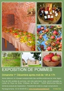 expo pommes 2013 saturé (2)